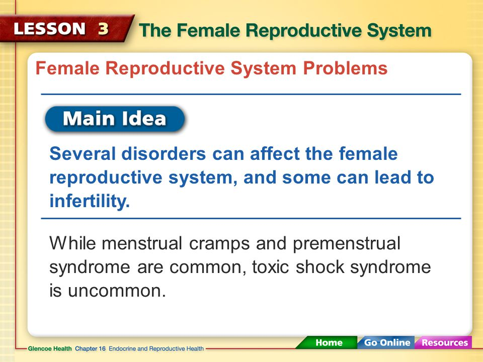 Female Reproductive System Problems Several disorders can affect the female reproductive system, and some can lead to infertility.
