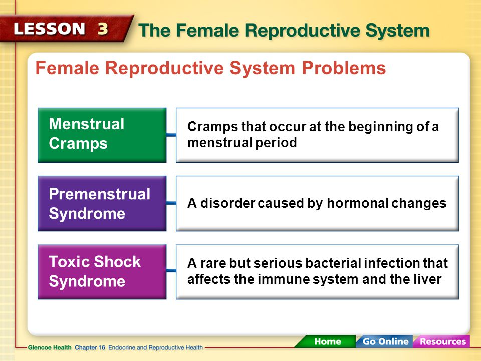 Female Reproductive System Problems Menstrual Cramps Cramps that occur at the beginning of a menstrual period Premenstrual Syndrome A disorder caused by hormonal changes Toxic Shock Syndrome A rare but serious bacterial infection that affects the immune system and the liver