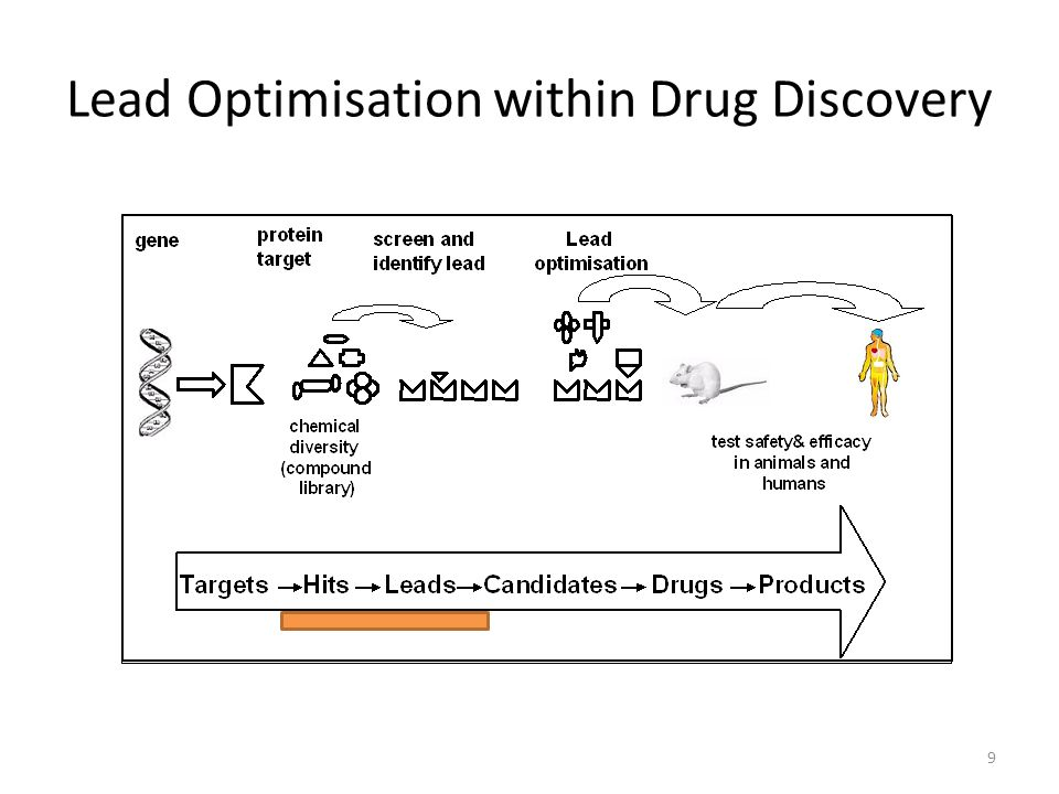 9 Lead Optimisation within Drug Discovery