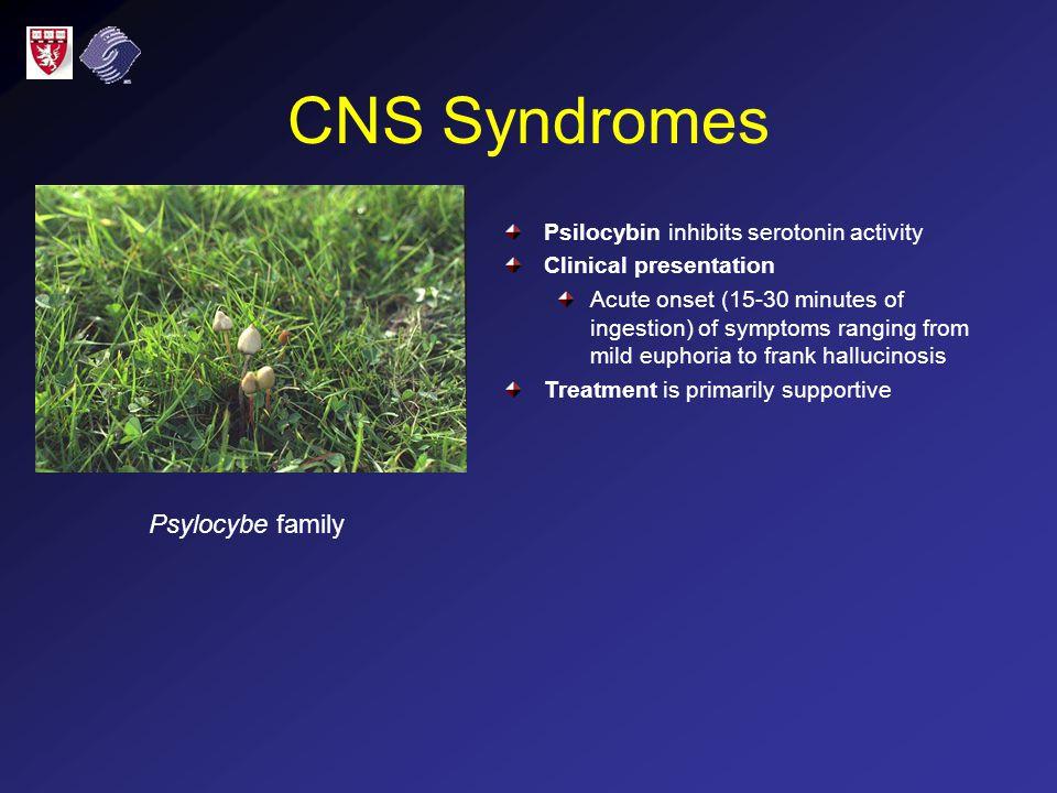 CNS Syndromes Psylocybe family Psilocybin inhibits serotonin activity Clinical presentation Acute onset (15-30 minutes of ingestion) of symptoms rangi
