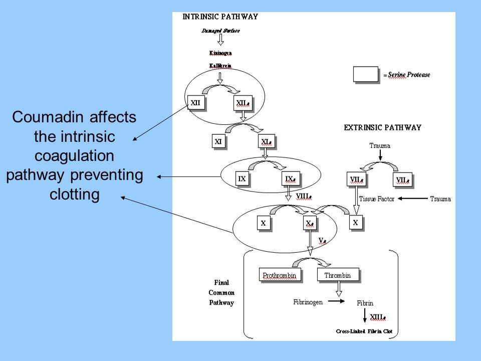 Drug Interactions May DECREASE anticoagulant effect: Barbiturates Carbamazepine (Tegretol) Cholestyramine (Questran) Rifampin Vitamin K Anticoagulant effect