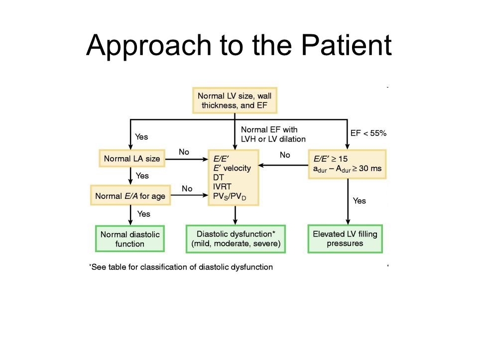 Approach to the Patient