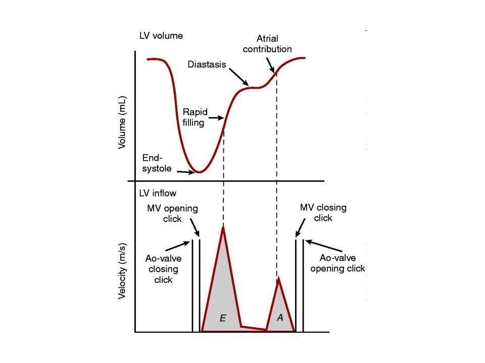 Objectives Defining Diastole Diastolic Function Measurements Diastolic Function Grades