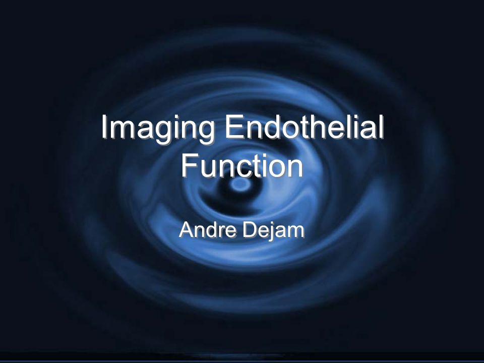 Imaging Endothelial Function Andre Dejam