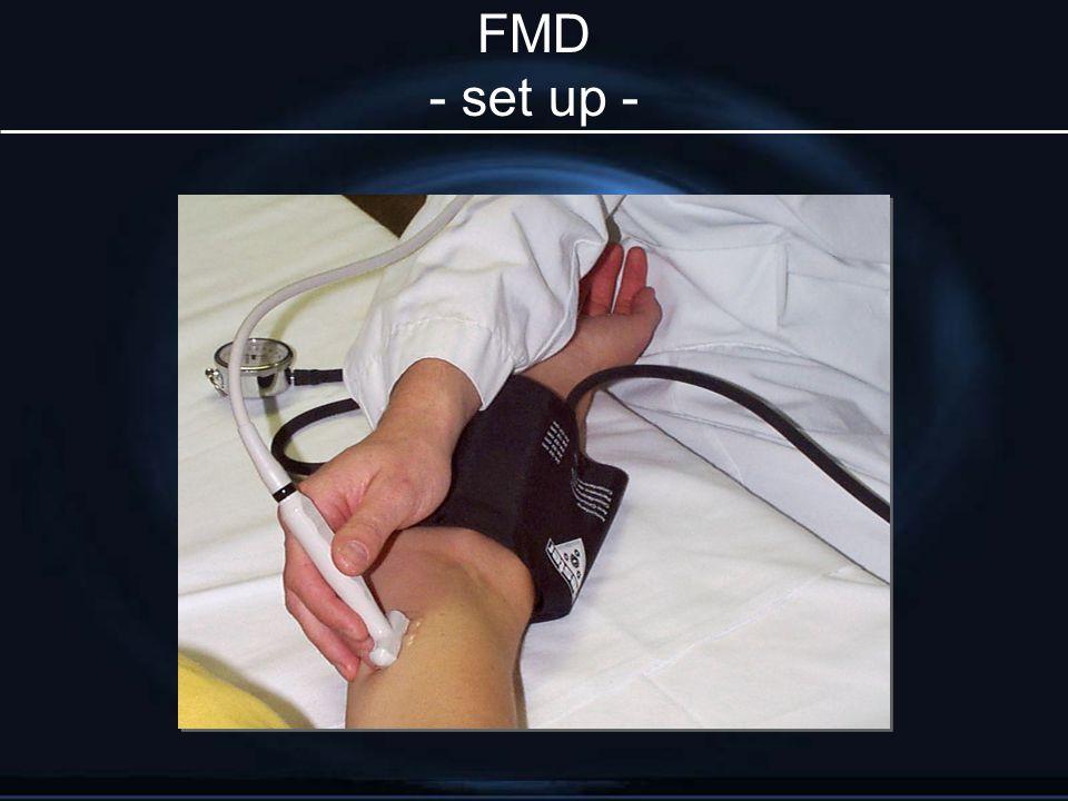 FMD - set up -
