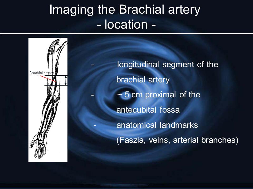 - longitudinal segment of the brachial artery - ~ 5 cm proximal of the antecubital fossa -anatomical landmarks (Faszia, veins, arterial branches) Brac