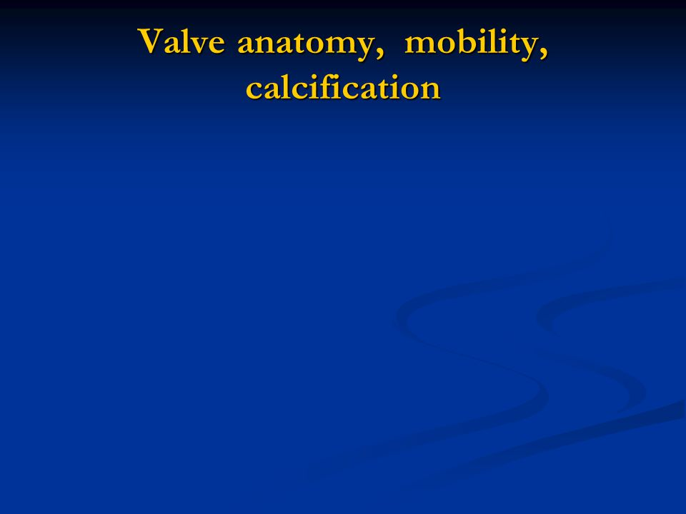 Valve anatomy, mobility, calcification