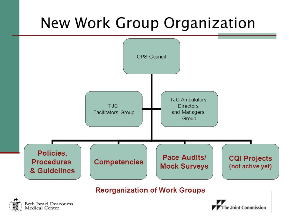 New Work Group Organization OPS Council Policies, Procedures & Guidelines Competencies Pace Audits/ Mock Surveys CQI Projects (not active yet) TJC Facilitators Group TJC Ambulatory Directors and Managers Group Reorganization of Work Groups