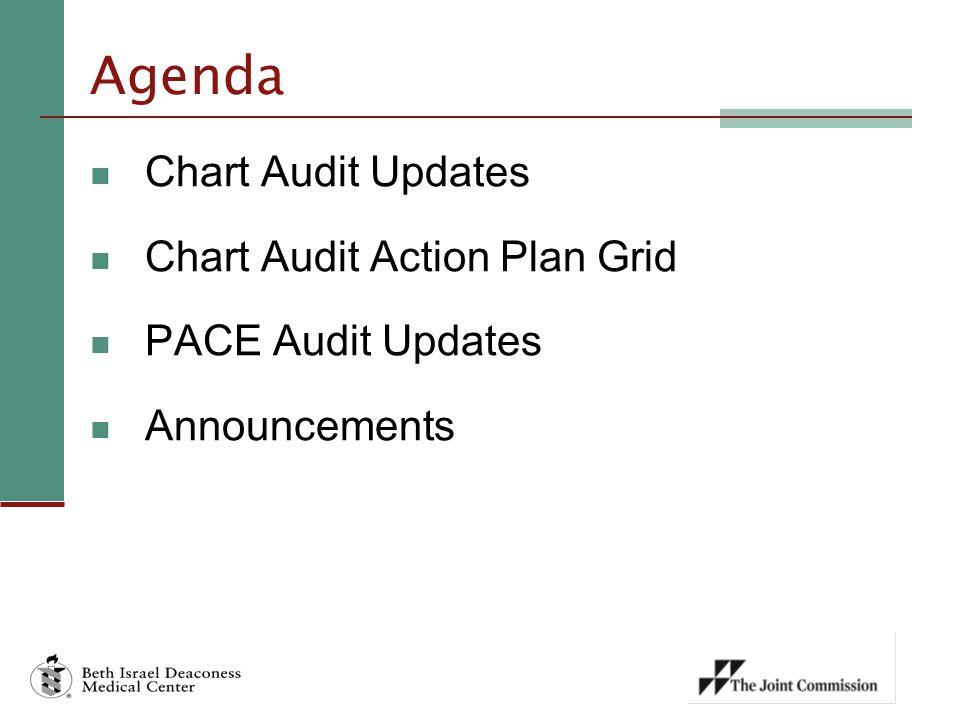 Agenda Chart Audit Updates Chart Audit Action Plan Grid PACE Audit Updates Announcements