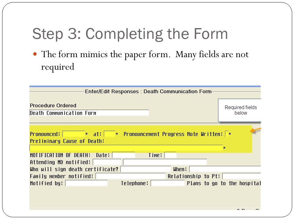 Step 3: Completing the Form The form mimics the paper form. Many fields are not required