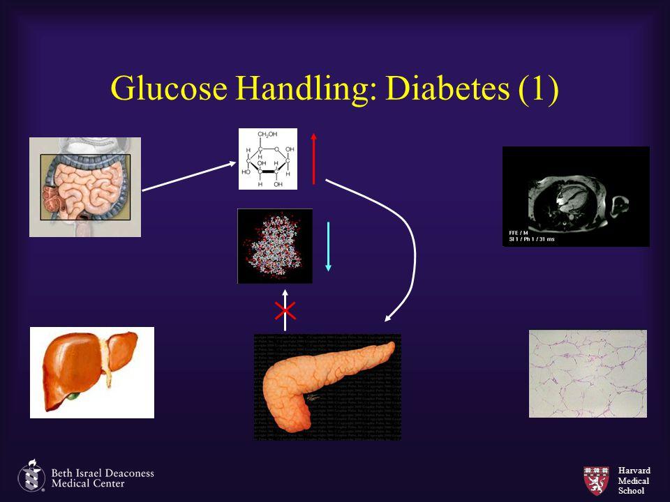 Harvard Medical School Glucose Handling: Diabetes (1)