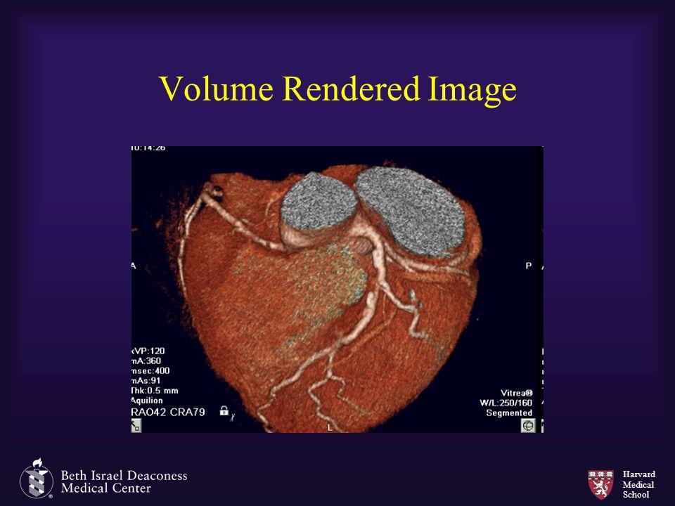 Harvard Medical School Volume Rendered Image