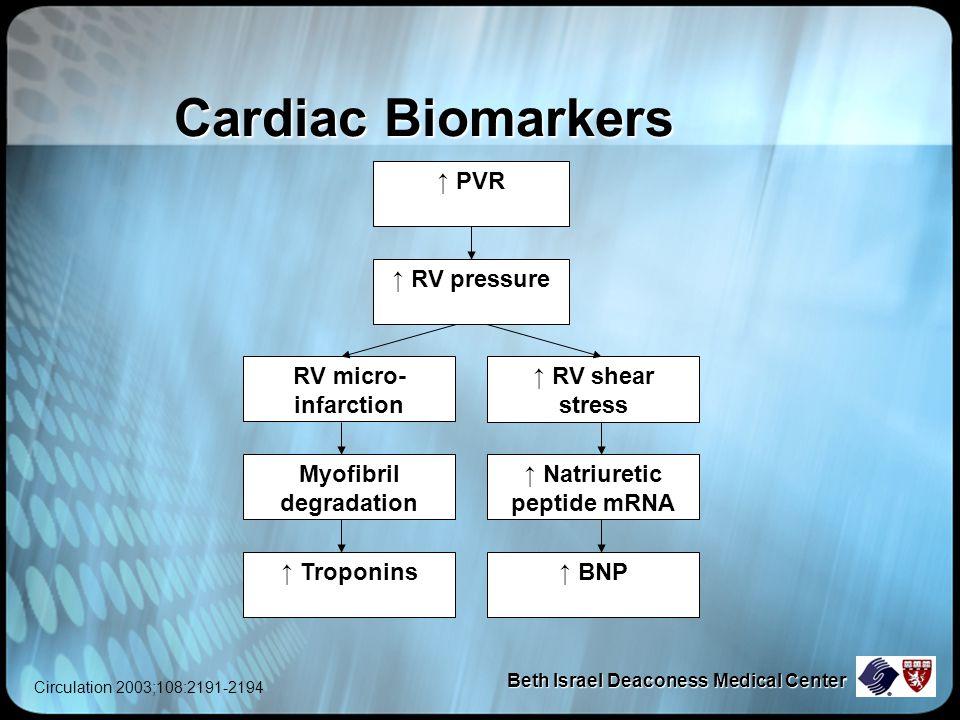 Beth Israel Deaconess Medical Center Cardiac Biomarkers ↑ RV pressure ↑ PVR RV micro- infarction ↑ RV shear stress Myofibril degradation ↑ Natriuretic peptide mRNA ↑ Troponins↑ BNP Circulation 2003;108:2191-2194