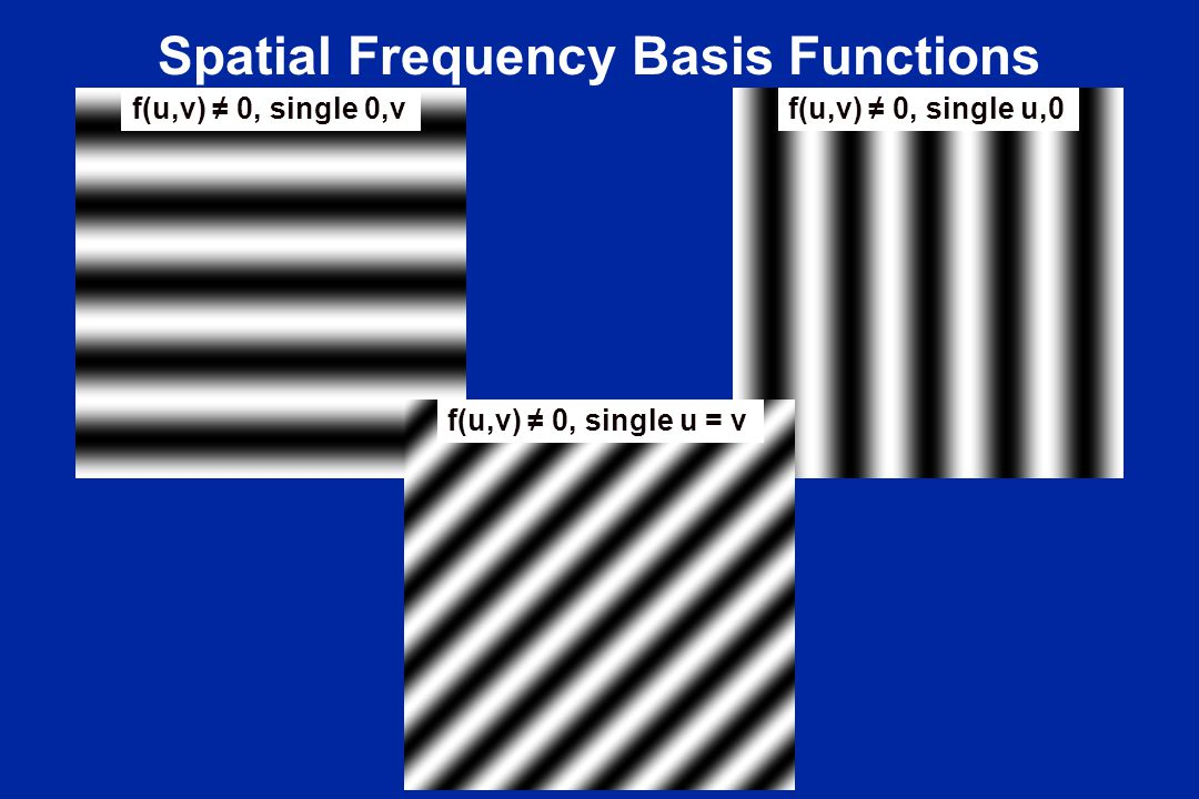 Spatial Frequency Basis Functions f(u,v) ≠ 0, single u,0f(u,v) ≠ 0, single 0,v f(u,v) ≠ 0, single u = v