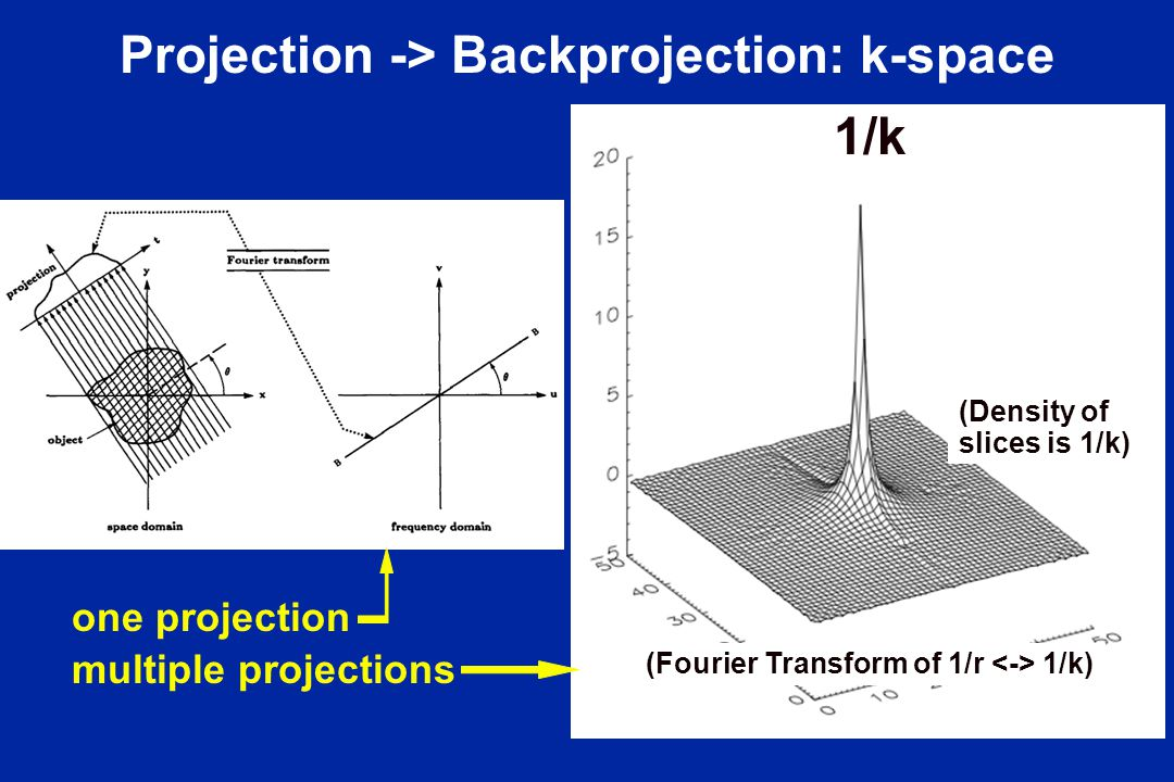 Projection -> Backprojection: k-space 1/k (Density of slices is 1/k) (Fourier Transform of 1/r 1/k) one projection multiple projections