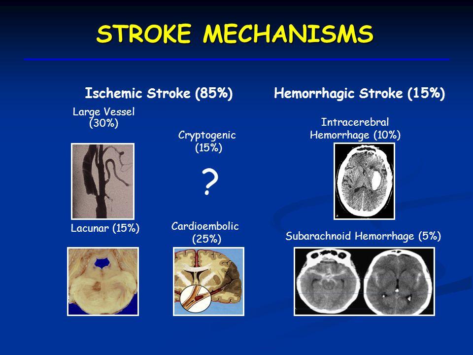 ADVANCES IN CEREBROVASCULAR DISEASE I.Treatment of Acute Ischemic Stroke II.