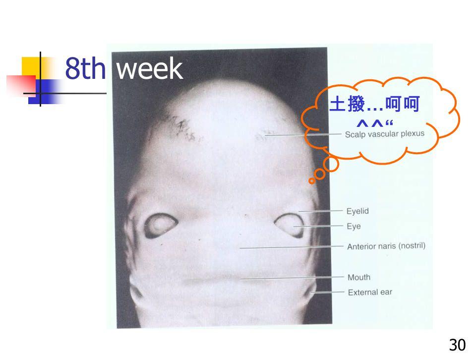 8th week 30 土撥 … 呵呵 ^^