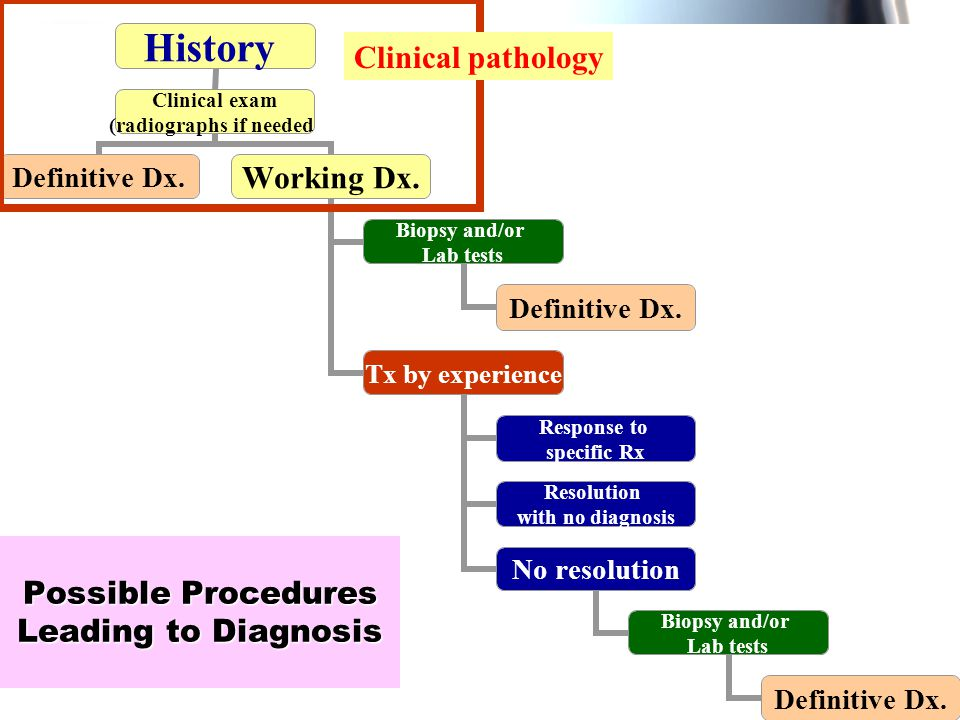 WenChen Wang IN the procedures, you have to do 1.To identified—undetected systemic disease 2.