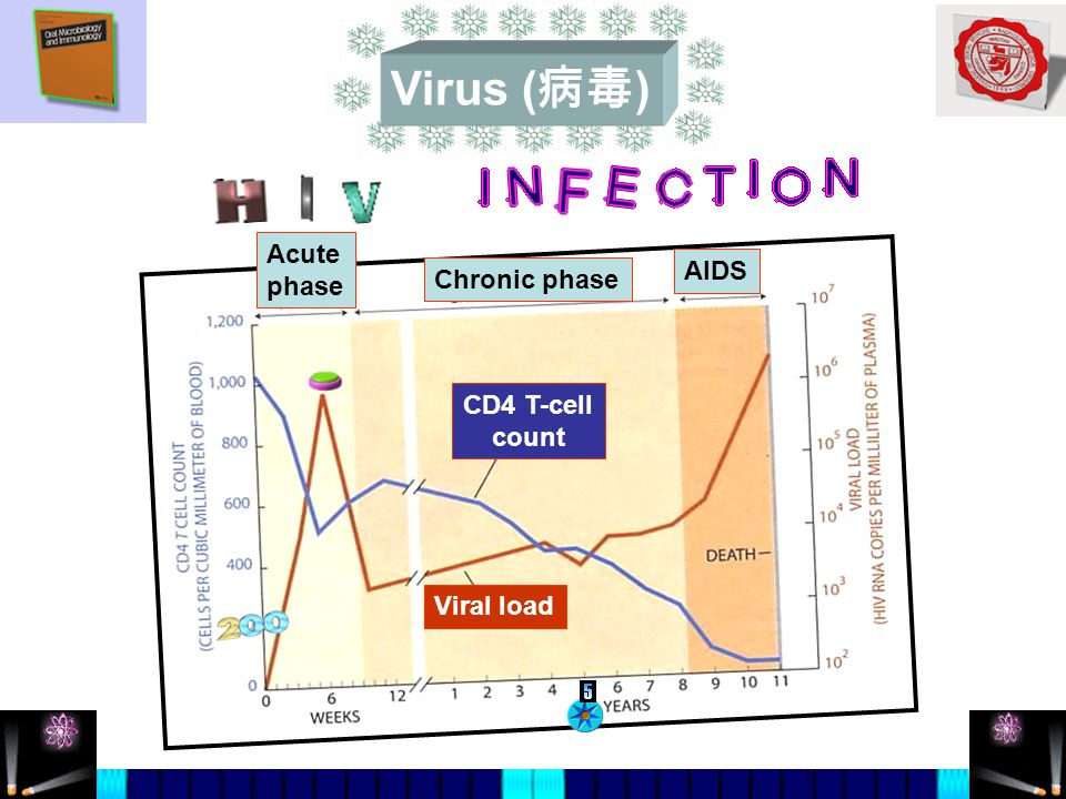 Virus ( 病毒 ) CD4 T-cell count Viral load Acute phase Chronic phase AIDS