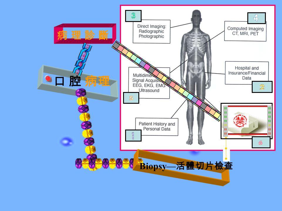 口 腔 病理 Biopsy— 活體切片檢查 病 理 診 斷病 理 診 斷