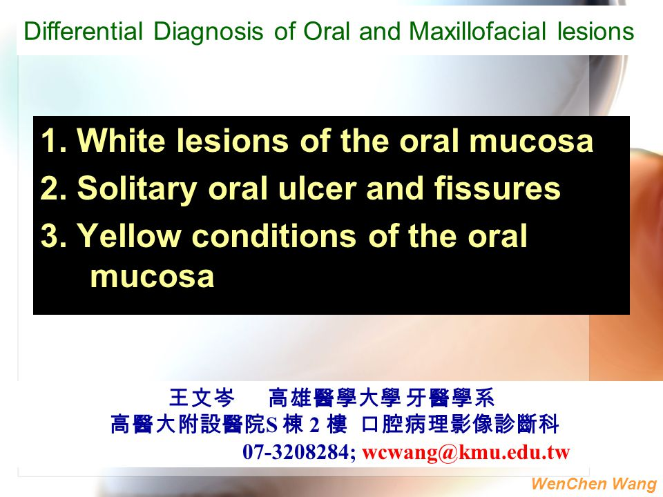 WenChen Wang 1. White lesions of the oral mucosa 2. Solitary oral ulcer and fissures 3. Yellow conditions of the oral mucosa 王文岑 高雄醫學大學 牙醫學系 高醫大附設醫院 S