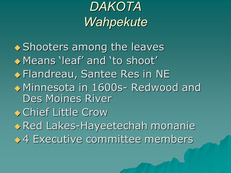 DAKOTA Wahpekute  Shooters among the leaves  Means 'leaf' and 'to shoot'  Flandreau, Santee Res in NE  Minnesota in 1600s- Redwood and Des Moines River  Chief Little Crow  Red Lakes-Hayeetechah monanie  4 Executive committee members