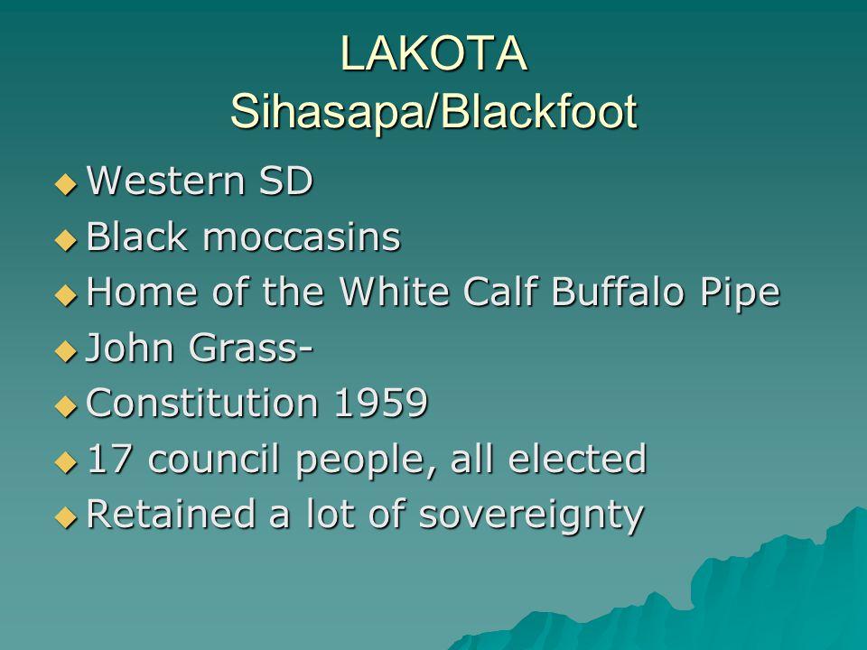 LAKOTA Sihasapa/Blackfoot  Western SD  Black moccasins  Home of the White Calf Buffalo Pipe  John Grass-  Constitution 1959  17 council people,