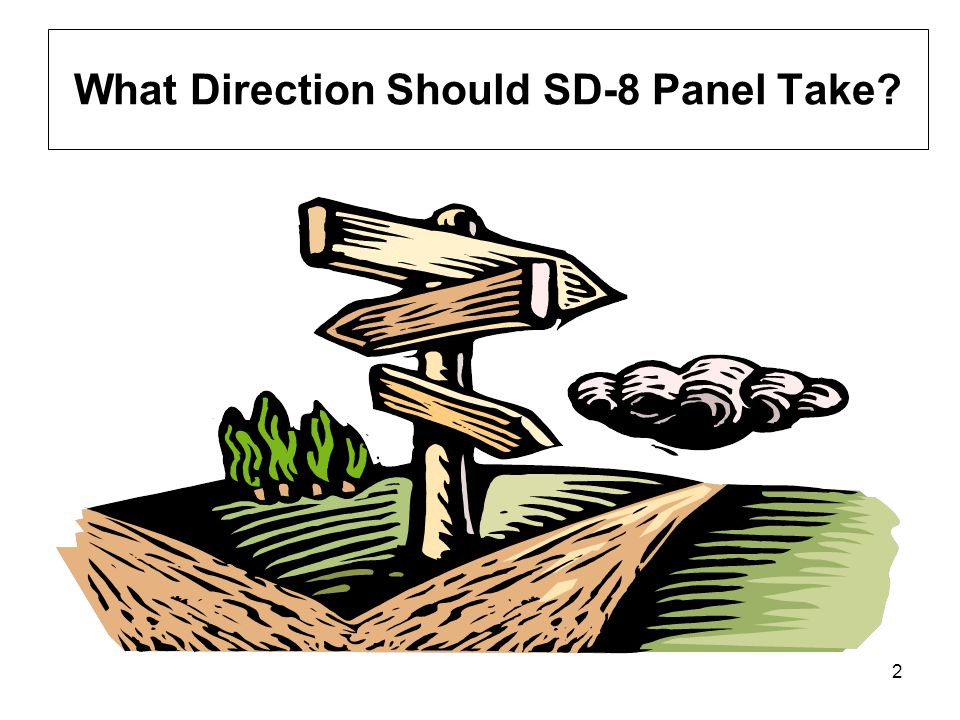 2 What Direction Should SD-8 Panel Take?