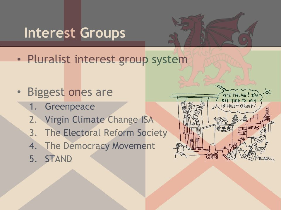 Interest Groups Pluralist interest group system Biggest ones are 1.Greenpeace 2.Virgin Climate Change ISA 3.The Electoral Reform Society 4.The Democra
