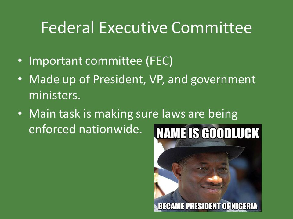 Federal Executive Committee Important committee (FEC) Made up of President, VP, and government ministers. Main task is making sure laws are being enfo