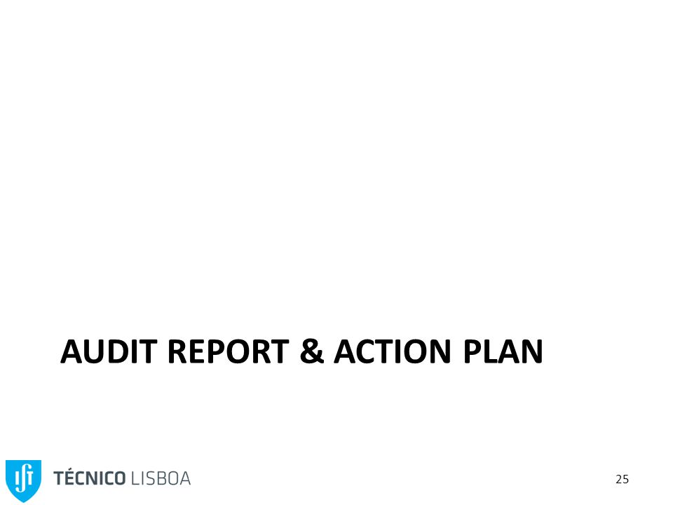 25 AUDIT REPORT & ACTION PLAN