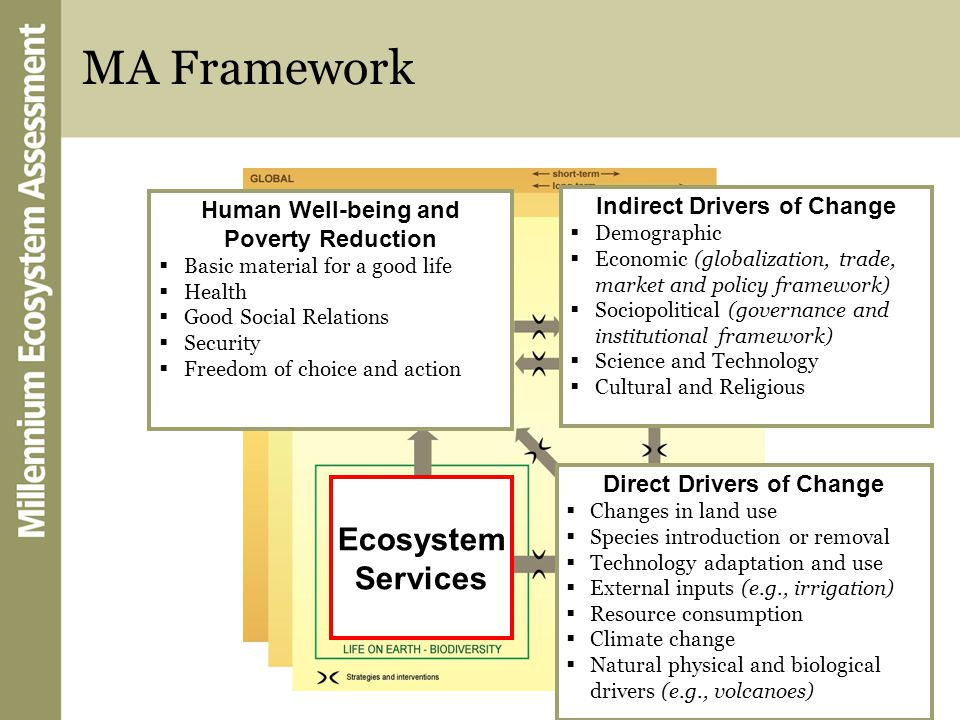 MA Framework Direct Drivers Indirect Drivers Ecosystem Services Human Well-being Direct Drivers of Change  Changes in land use  Species introduction