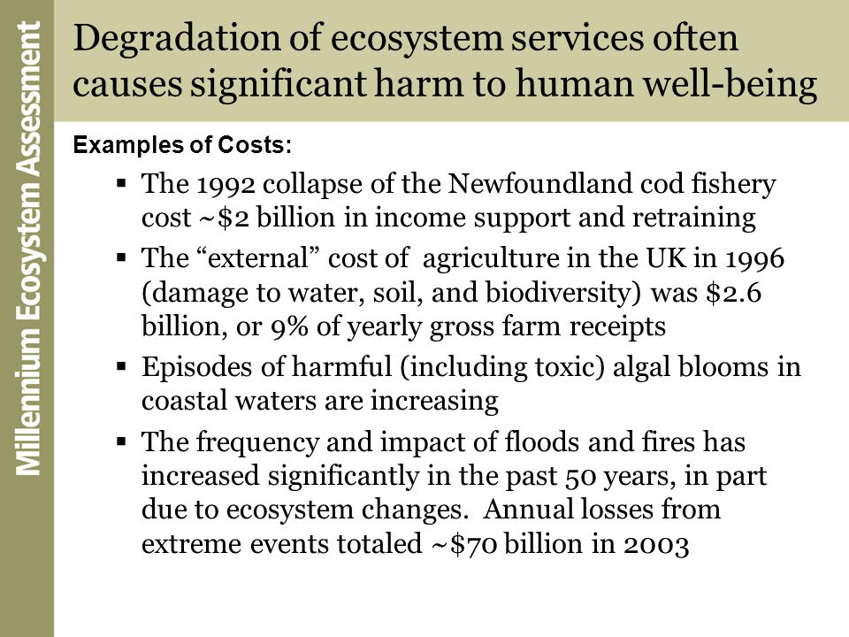 Examples of Costs:  The 1992 collapse of the Newfoundland cod fishery cost ~$2 billion in income support and retraining  The external cost of agriculture in the UK in 1996 (damage to water, soil, and biodiversity) was $2.6 billion, or 9% of yearly gross farm receipts  Episodes of harmful (including toxic) algal blooms in coastal waters are increasing  The frequency and impact of floods and fires has increased significantly in the past 50 years, in part due to ecosystem changes.