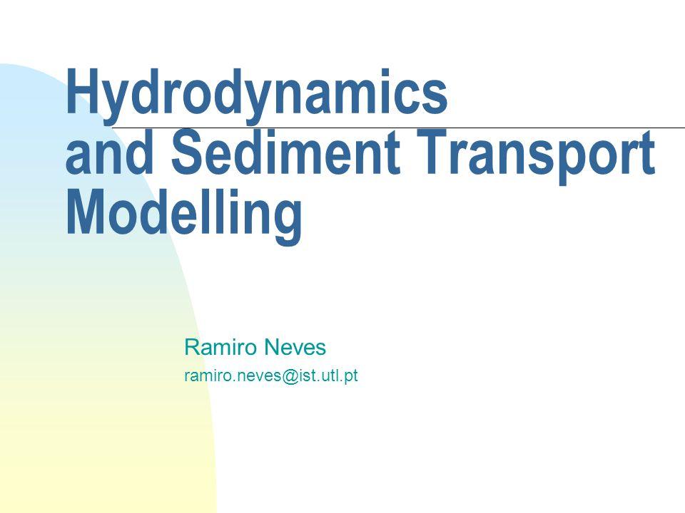 Hydrodynamics and Sediment Transport Modelling Ramiro Neves ramiro.neves@ist.utl.pt