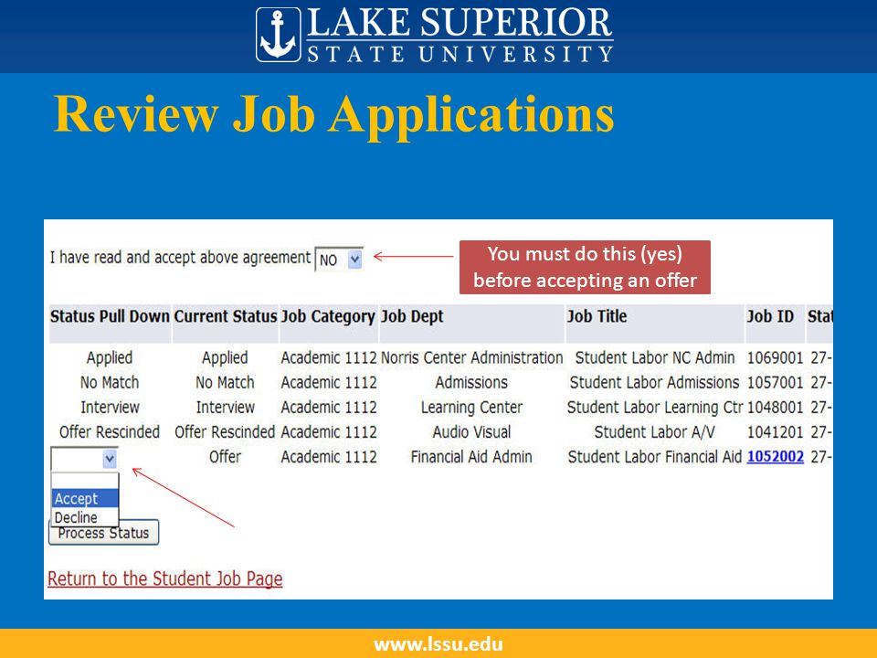 Review Job Applications www.lssu.edu You must do this (yes) before accepting an offer