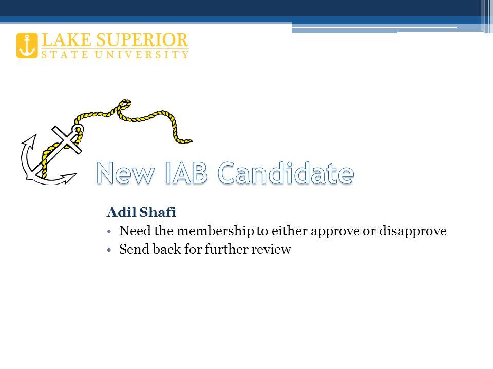NEW CANDIDATE TO THE IAB NameAdil Shafi CompanyADVENOVATION, Inc.