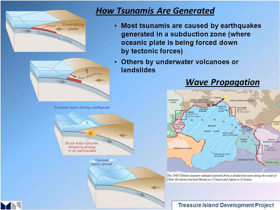 Treasure Island Development Project How Tsunamis Are Generated Most tsunamis are caused by earthquakes generated in a subduction zone (where oceanic plate is being forced down by tectonic forces) Others by underwater volcanoes or landslides Wave Propagation SF Bay