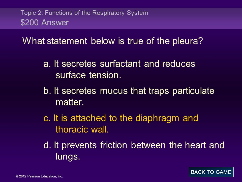 © 2012 Pearson Education, Inc. What statement below is true of the pleura? a. It secretes surfactant and reduces surface tension. b. It secretes mucus