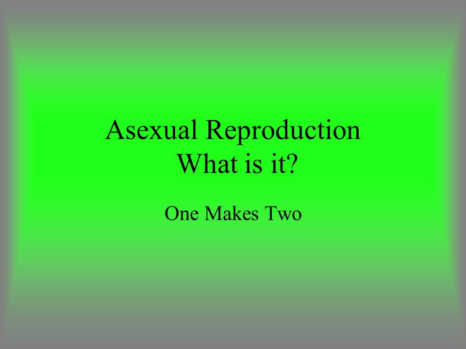 Asexual Reproduction What is it? One Makes Two