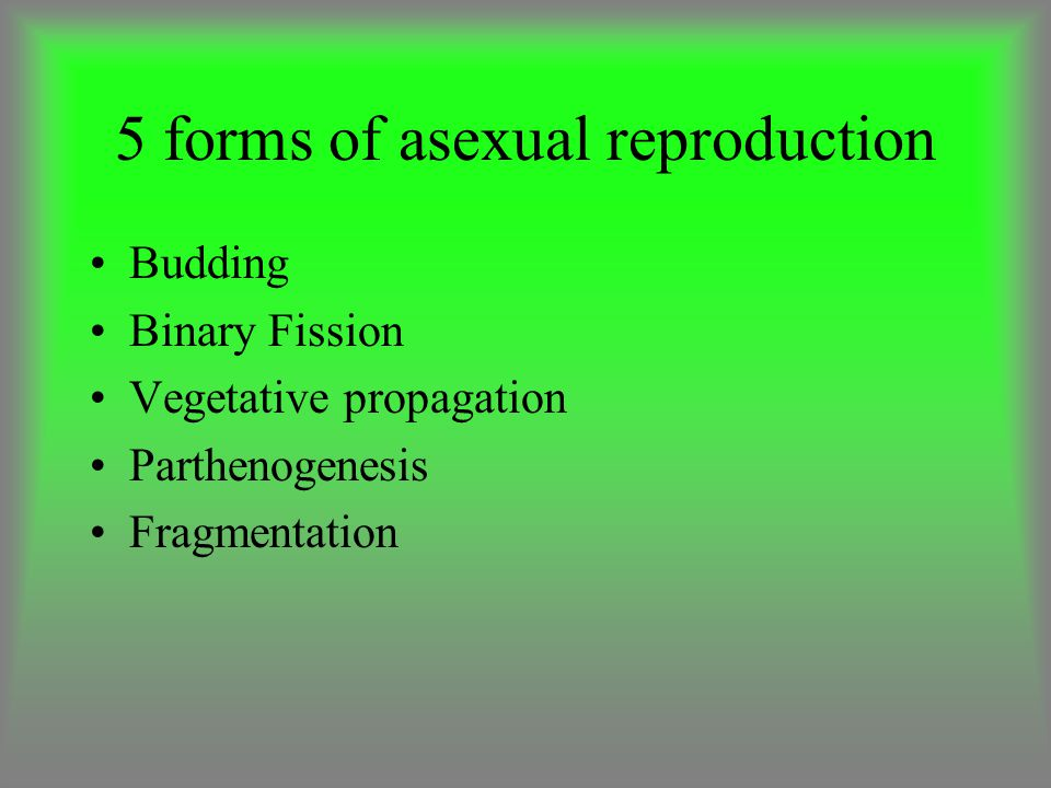 5 forms of asexual reproduction Budding Binary Fission Vegetative propagation Parthenogenesis Fragmentation