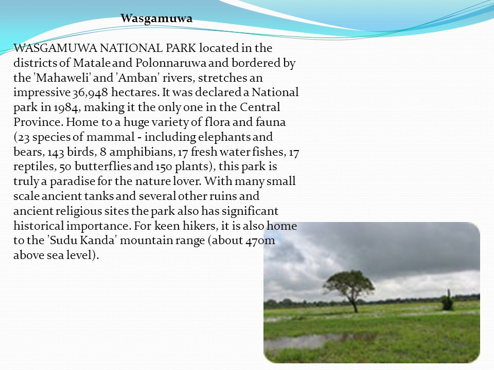 Wasgamuwa WASGAMUWA NATIONAL PARK located in the districts of Matale and Polonnaruwa and bordered by the Mahaweli and Amban rivers, stretches an impressive 36,948 hectares.