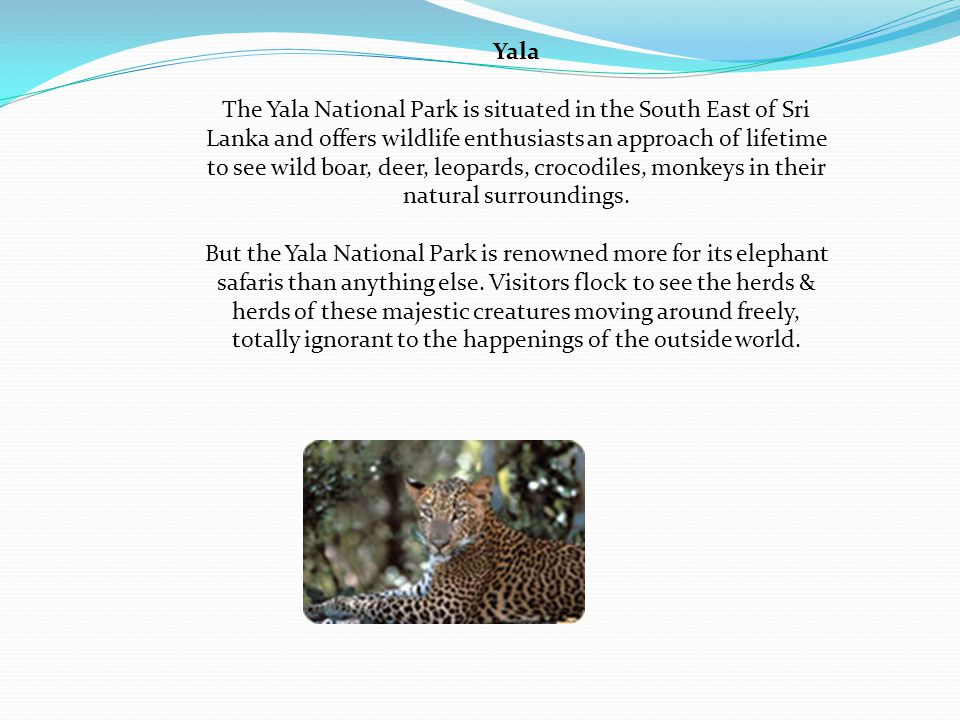 Yala The Yala National Park is situated in the South East of Sri Lanka and offers wildlife enthusiasts an approach of lifetime to see wild boar, deer, leopards, crocodiles, monkeys in their natural surroundings.