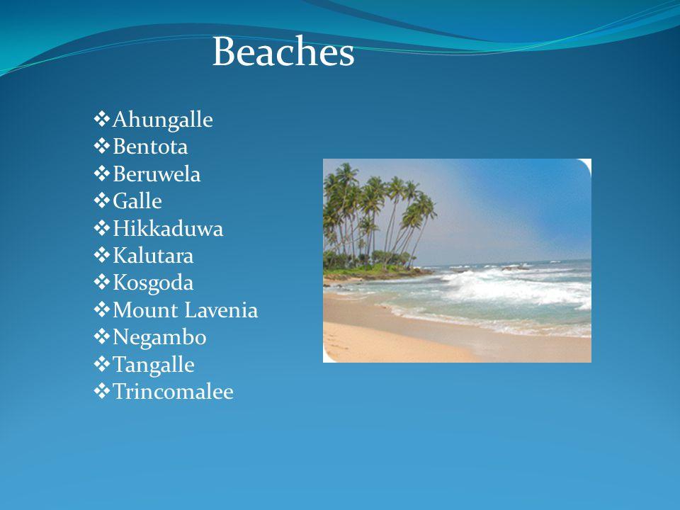 Beaches  Ahungalle  Bentota  Beruwela  Galle  Hikkaduwa  Kalutara  Kosgoda  Mount Lavenia  Negambo  Tangalle  Trincomalee