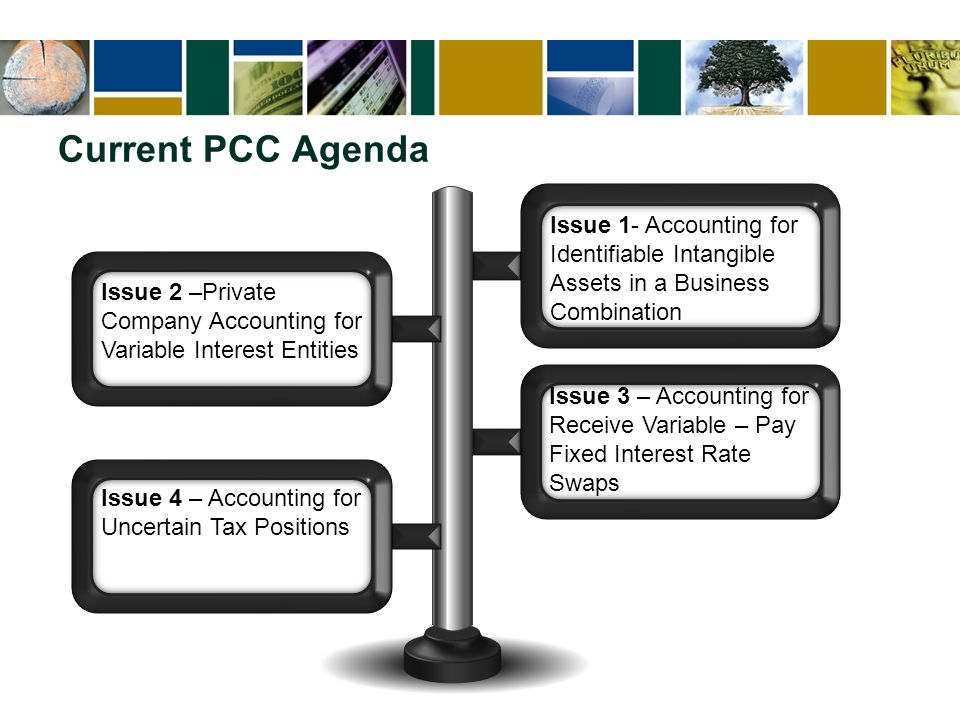 Current PCC Agenda Issue 1- Accounting for Identifiable Intangible Assets in a Business Combination Issue 3 – Accounting for Receive Variable – Pay Fi