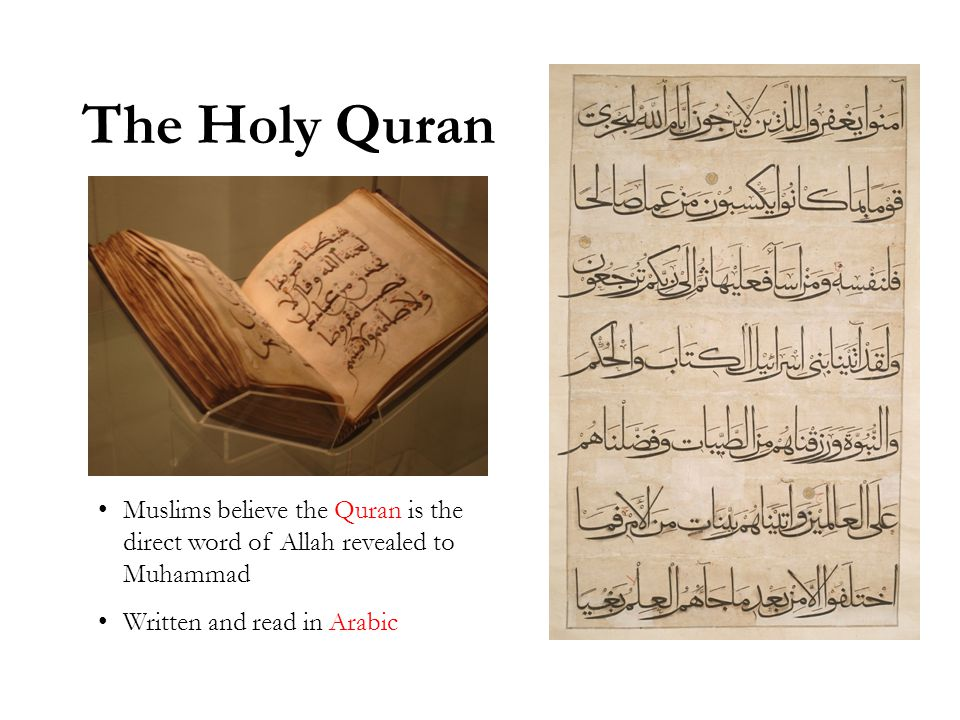 The Holy Quran Muslims believe the Quran is the direct word of Allah revealed to Muhammad Written and read in Arabic