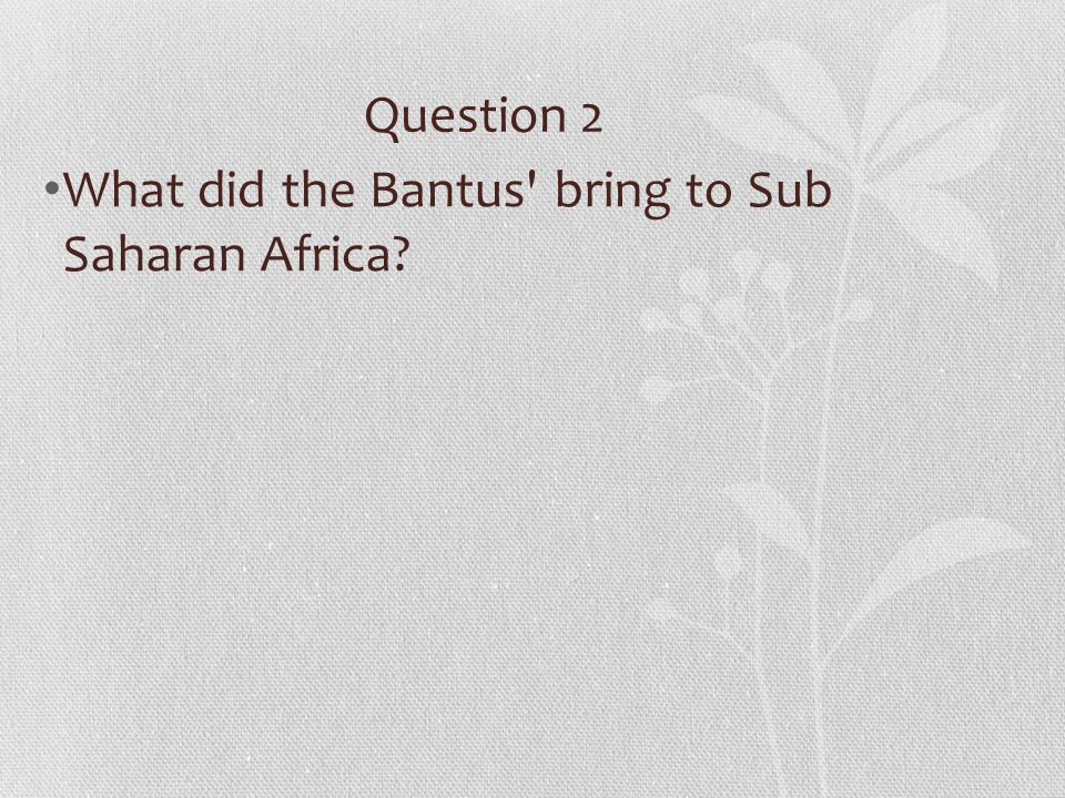 Question 2 What did the Bantus' bring to Sub Saharan Africa?
