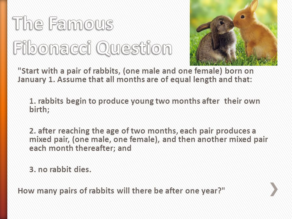 » Sequence: 1, 1, 2, 3, 5, 8, 13, 21, 34, 55, 89, 144 You start off with two rabbits: one male, one female The rabbits are born in January.