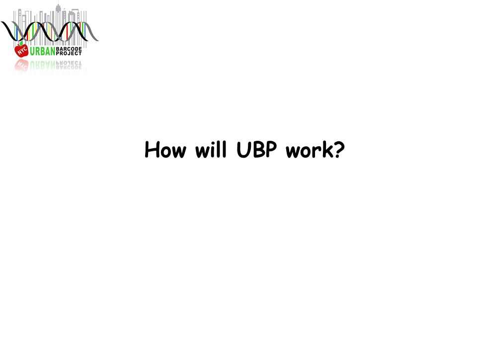 How will UBP work