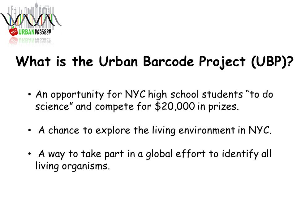 What is the Urban Barcode Project (UBP).
