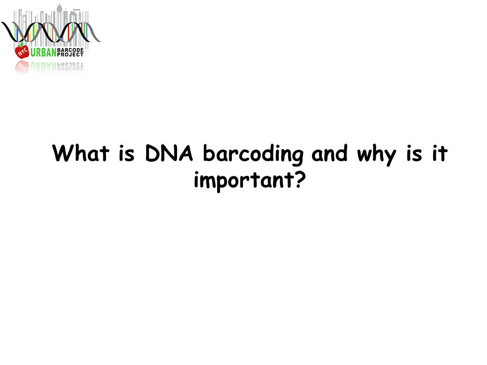 What is DNA barcoding and why is it important?